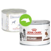 Royal Canin/ Feline Veterinary Diet RECOVERY konserwa