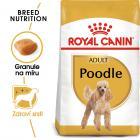 Royal Canin PUDEL