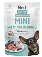 BRIT CARE dog  MINI pouch  STERILISED  salmon/herring