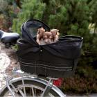 Transporter rowerowy na bagażnik  zamykany ROUND 48x29x42cm / 6 kg