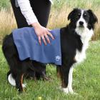 Trixie dog TOP-FIX super chłonny ręcznik 50x60cm