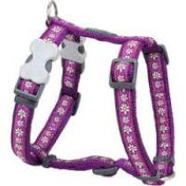 Szelki RD DAISY chain Purpurowe