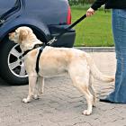 Trixie Pasy bezpieczeństwa dla psa z szelkami